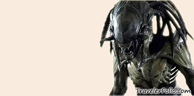 predator-alien-picture