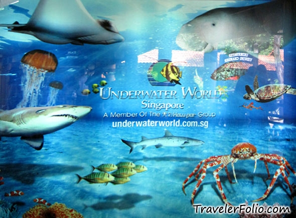 underwater-world-entrance-sentosa