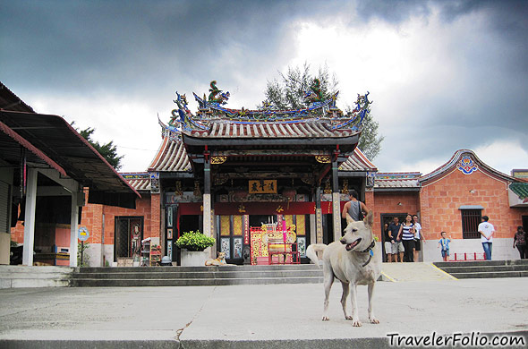 penang-snake-temple