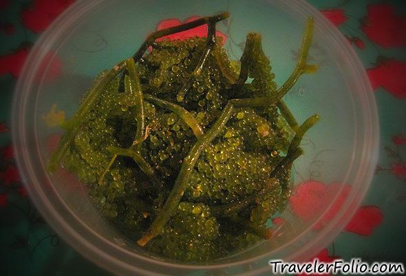 fresh-lato-seaweed