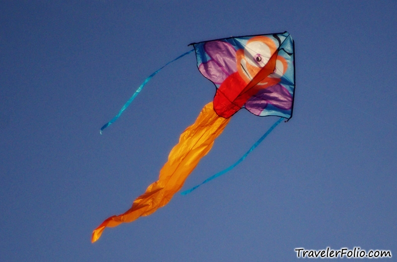 kite flying videos