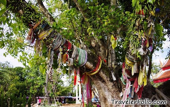 Chinese Wishing Tree Craft