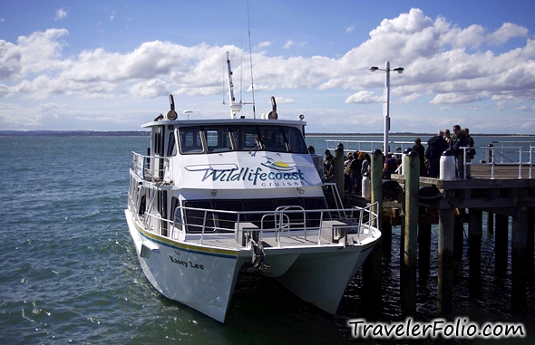 ... take the 2-hour seal watching eco-cruise (A$67/adult) on Wildlifecoast ...