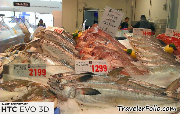 Seafood For Purchase