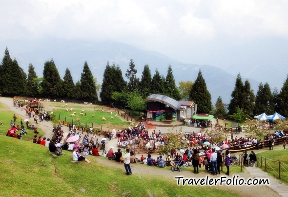 Nantou Attractions - Cingjing Farm, Monster Village | Taiwan ...