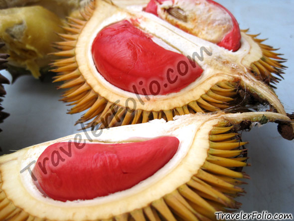 Red Durian Wiki Travelerfolio Travel Amp Lifestyle Blog Singapore
