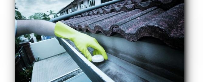 RoofTop-Gutter-dengue-wipeout