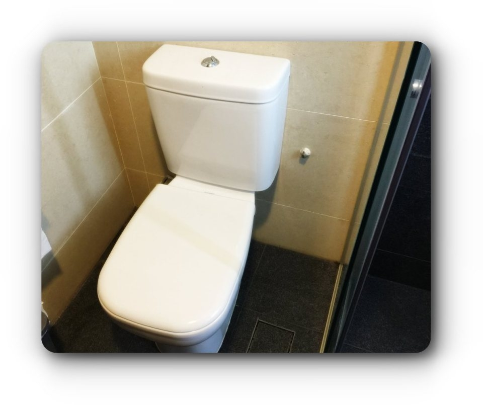 cover-toilet-seat