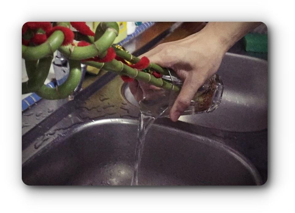 vase-remove-water