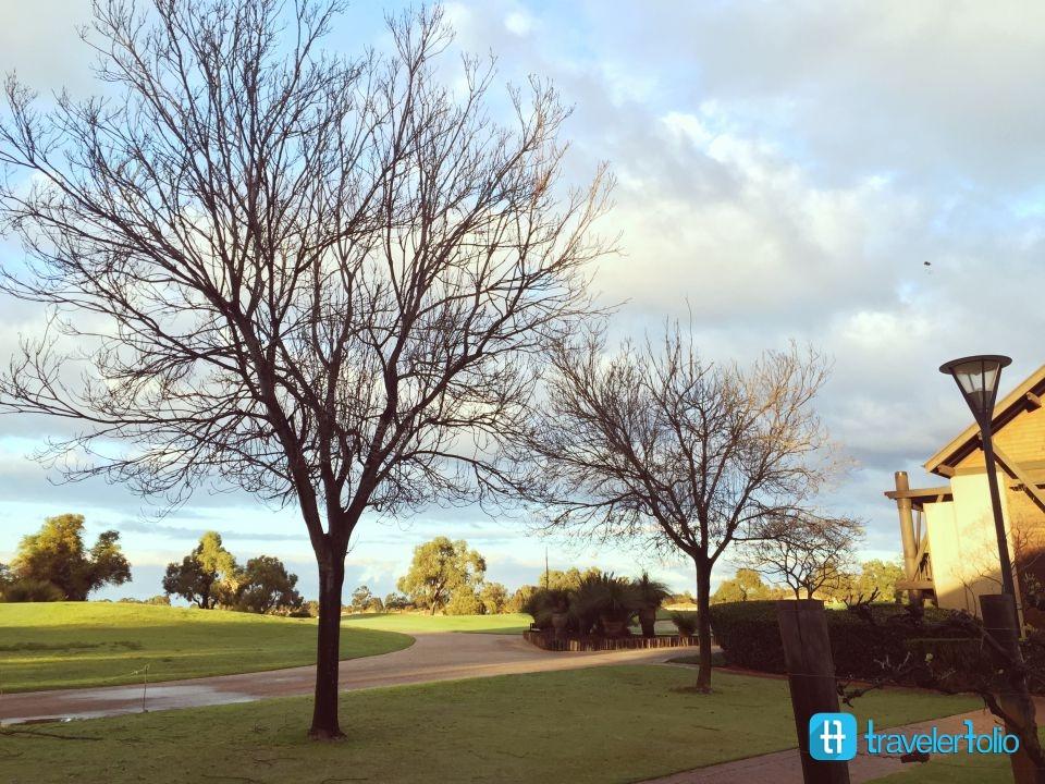 morning-colours-australia