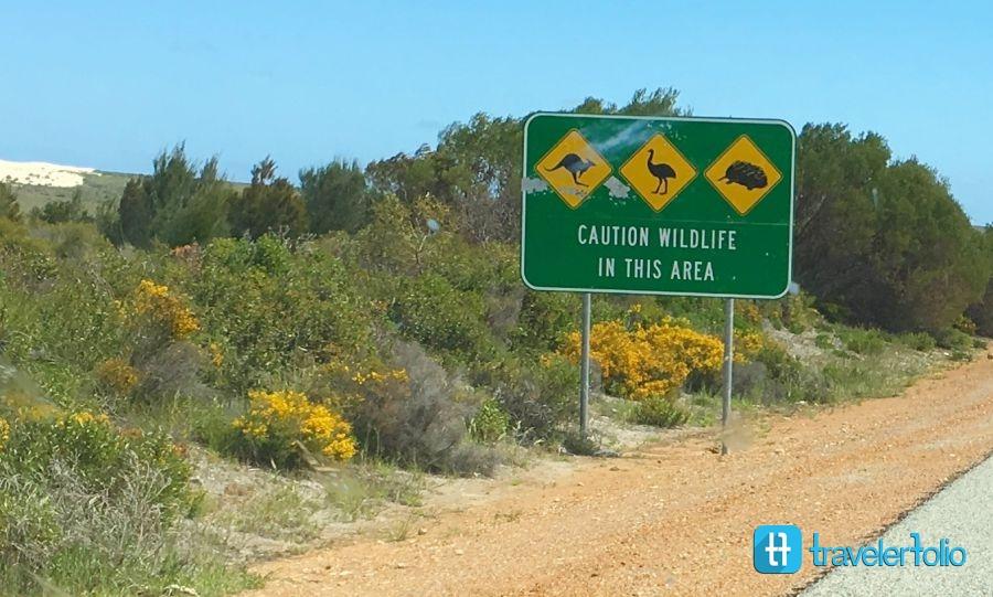 wildlife-road-sign-western-australia