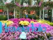 Singaporean Wins Changi Millionaire Changi Airport Singapore Travel Amp Lifestyle Blog