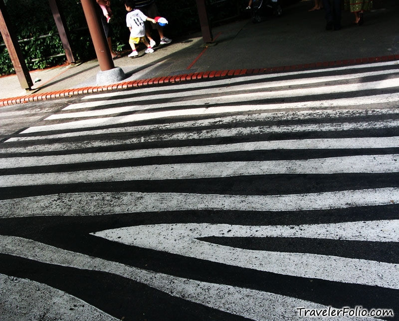 "And this is ""zebra crossing"""
